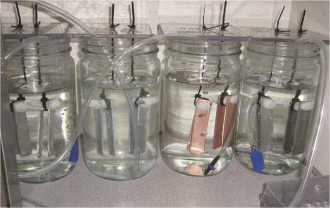 The compatibility of several materials of construction with detergent and disinfectant solutions can be tested in the laboratory by means of immersion tests conducted with coupons