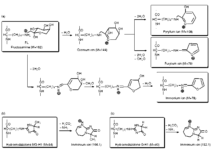 Fragmentation of fructosamine and hydroimidazolone glycation adducts