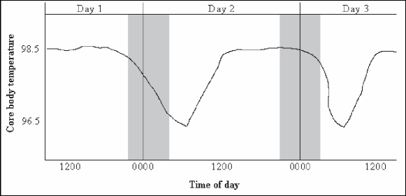 Typical core body temperature circadian cycle