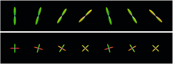 Examples from the synthetic dataset simulating (top) one- and (bottom) two-direction fiber bundles