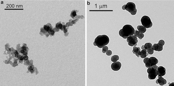 TEM images of aggregates of high structure N-472 with branched primary particle aggregates (a) and low structure N-990 with isolated spherical primary particles (b)