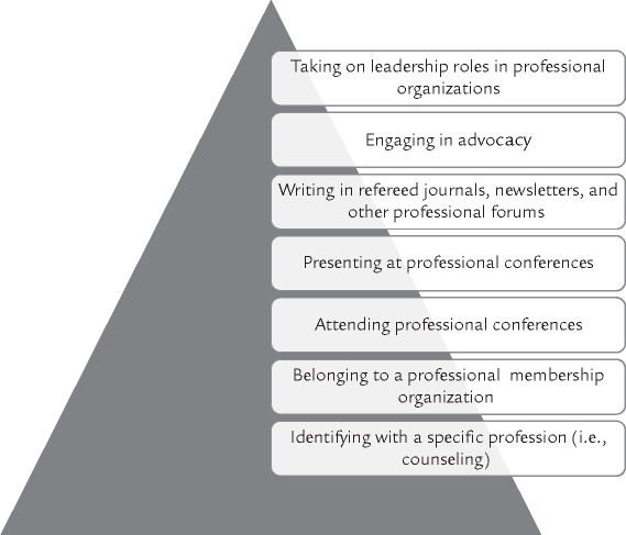 Professional Involvement Pyramid