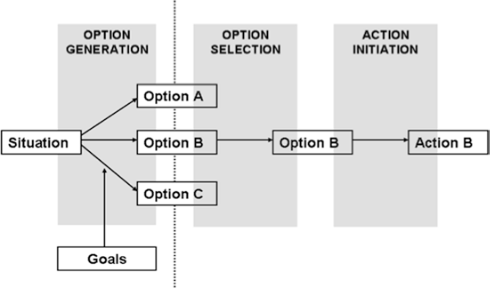 Stages of decision making in our model. (Kalis et al., 2008, p. 403) (Copyright 2008 by Springer Science + Business Media. With permission of Springer)
