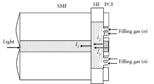 PCF-FFPI with liquid sampling channels