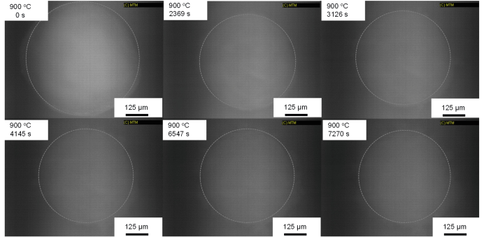 Time series of CSLM images of a spherical DyO particle in molten CaCl at 1173 K (900 °C)