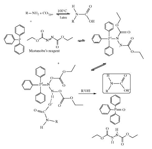 Direct Transformations of Amines to Urethanes