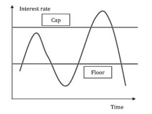 caps floors and collars examples