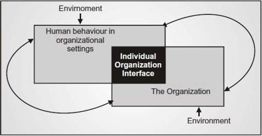 human behaviour in organisation Start studying human behavior in organization (chapter 1 to 5) learn vocabulary, terms, and more with flashcards, games, and other study tools.